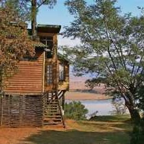 Bahati Tree Lodge