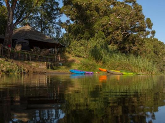 Bonnievale River Lodge - 139896