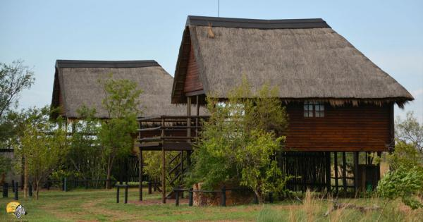 Dinokeng Game Reserve - 143312