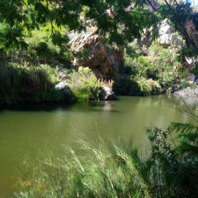 Eagle Falls Country Lodge & Adventures - 145297