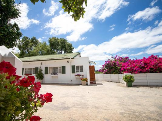 The Green Olive Guesthouse Robertson - 151256
