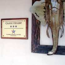 African Elephant Guest House