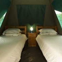 Addo Elephant Park Spekboom Tented Camp