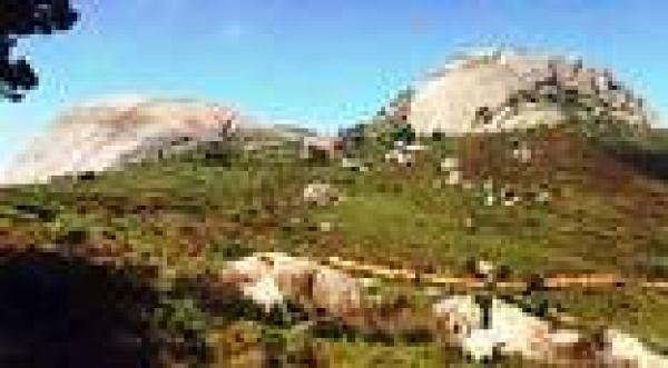 History of Paarl
