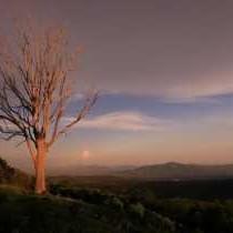 Kings Walden at Sunset