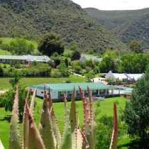 De Oude Meul Country Lodge and Game Farm