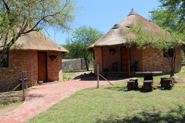 Lion and Buffalo Cottages